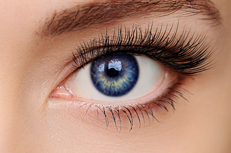 Urban Soul Salon and Spa Eyelash Tinting Services